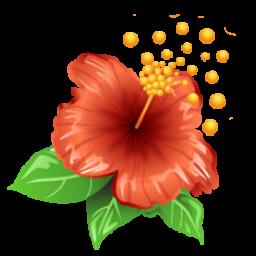 باغ گل ها